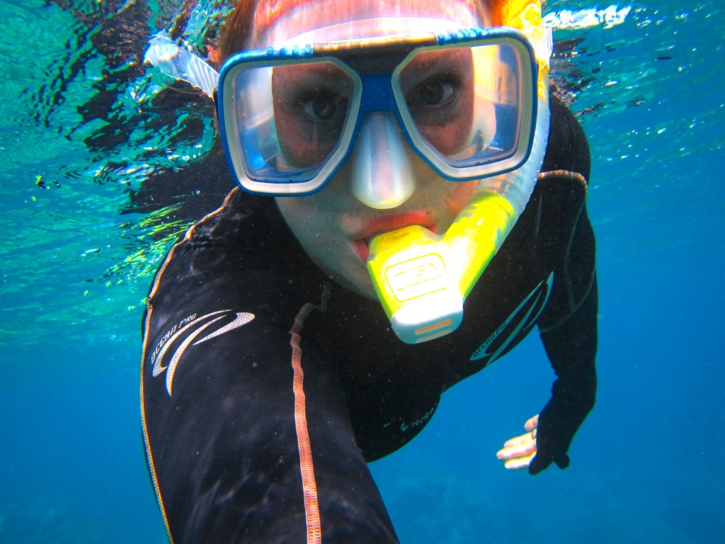 Snorkeling the Great Barrier Reef 41
