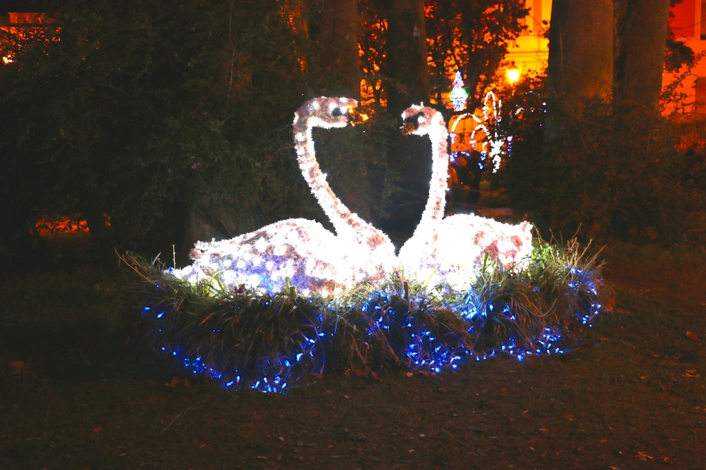 Story Book Forest Lights Salerno Italy