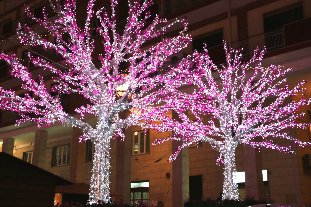 Chinese Themed Lights Salerno Italy