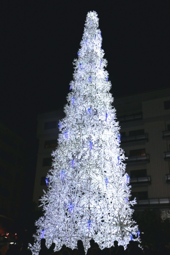 The Big Tree Salerno Italy