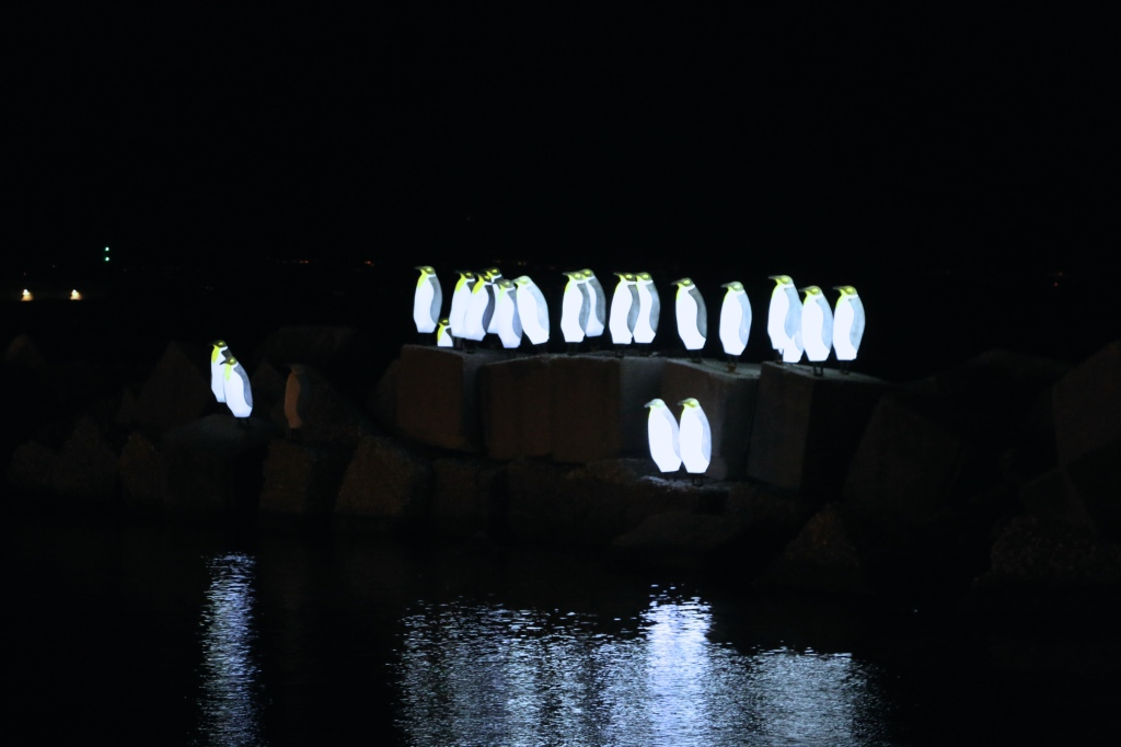 PENGUINS Lights Salerno Italy