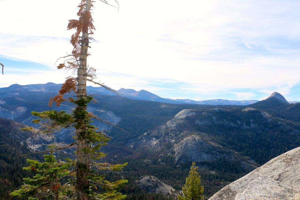 Climbing Half Dome Yosemite National Park 51